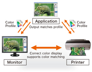 Color Matching for Design and Printing